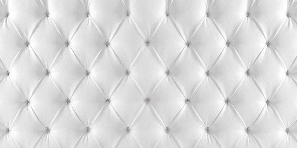 White Background Leather.jpg
