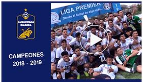 cañoneros-campeones.png