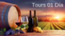 Tours 01 día