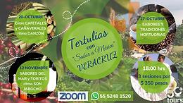 Veracruz Virtual Tertulias