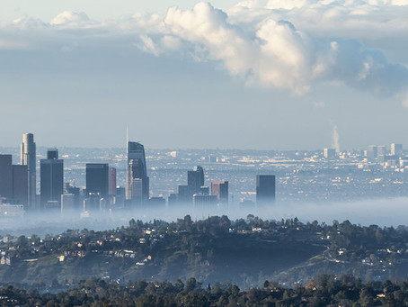 Why air pollution causes more severe Covid-19 cases.