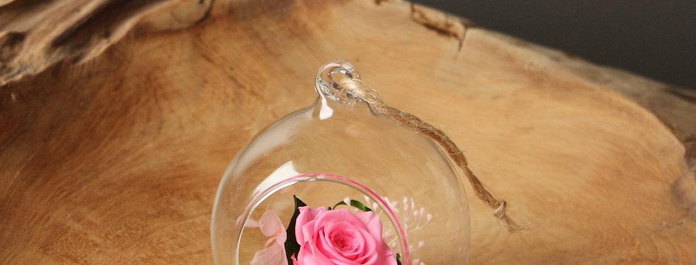 XS stikla bumba ar rozi (dažādās krāsās)