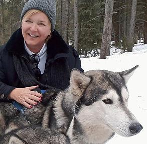 dog sledding Breckenridge Christmas 2018