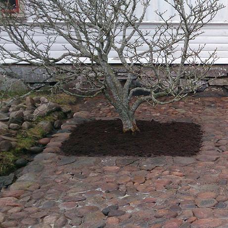 Trädgårdsanläggning