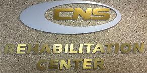 CNS-logo (1).jpg