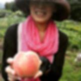 素敵なお姉さまが桃狩りに来てくださいました♥_桃狩り、大人一人3000円桃食べ放