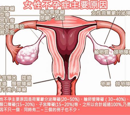 女性懷孕的前提  媽媽 + 寶寶
