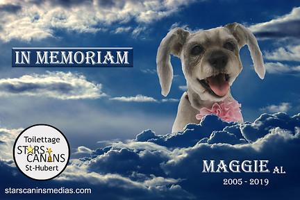 2019-Maggie AL (2005-2019).jpg