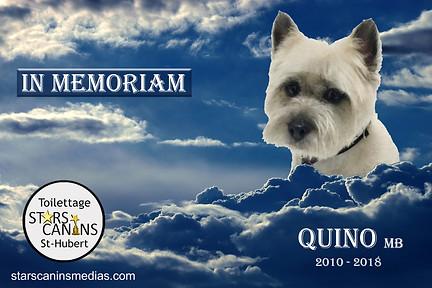 2018-Quino MB (2010-2018).jpg