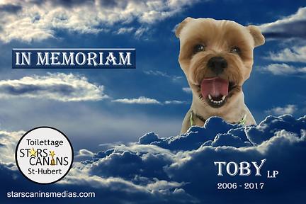 2017-Toby LP (2006-2017).jpg