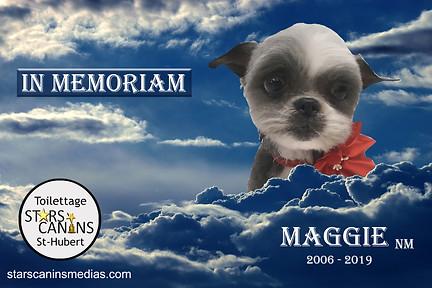 2019-Maggie NM (2006-2019).jpg