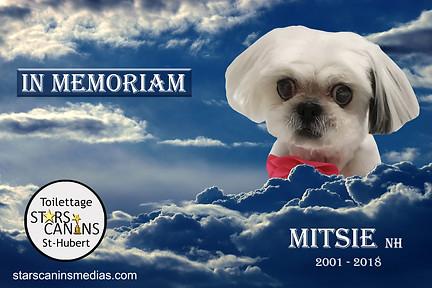 2018-Mitsie NH (2001-2018).jpg