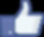 Link_naar_facebook.png