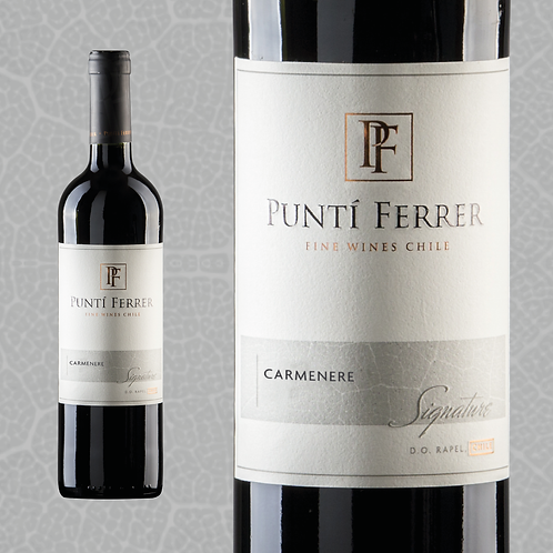 Caja 6 Botellas SIGNATURE, Carmenere (Valor $3.490 por botella).