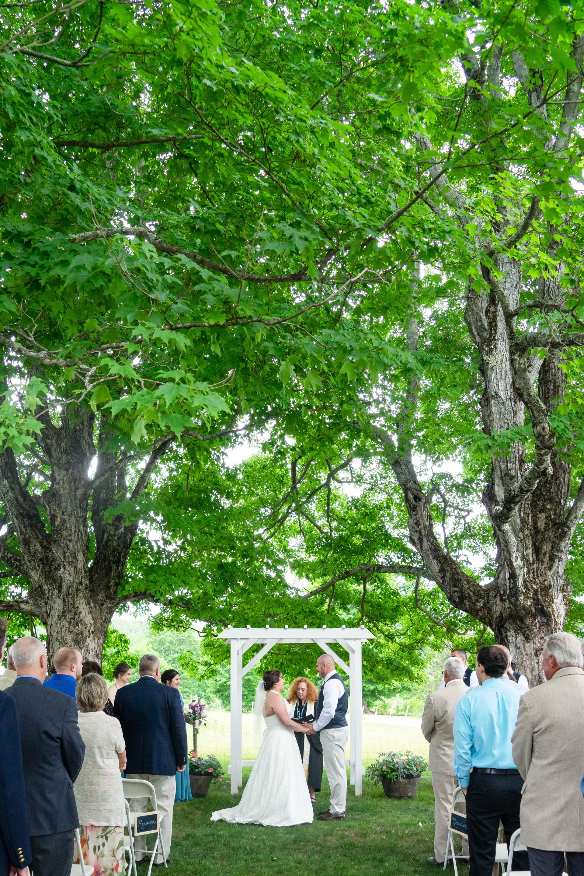 Ray Wedding (351).jpg