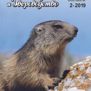 Журнал №2 2019