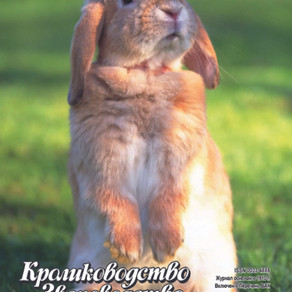 Журнал №4 2019