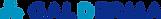 galderma-logo.png