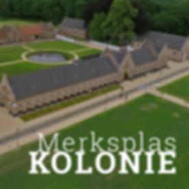 kolonie_vierkant.png