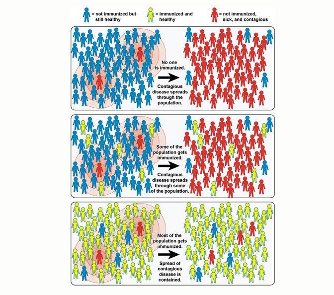 herd immunity.jpg