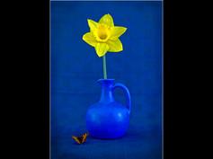 The Blue Pot Ken Brendon