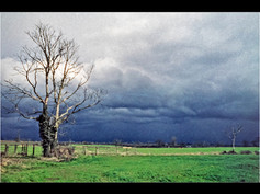 1984 'The Approaching Storm' by Ken Brendon