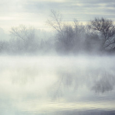 Mid Winter Morning