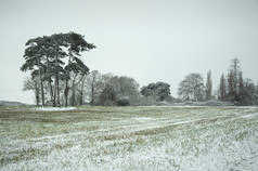 HIGHLY COMMENDED  Snow over the fields  L Beech