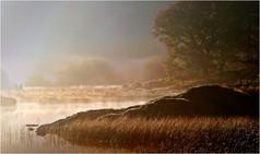 2013 'Lakeside Mist' by Ken Brendon