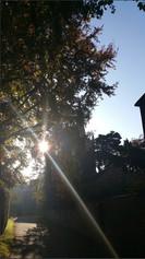 Splash of Sun - St. Marys Ian Atchison