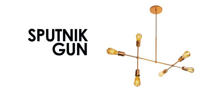 gun wi.jpg