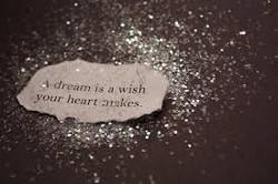 A dream is a wish....jpeg
