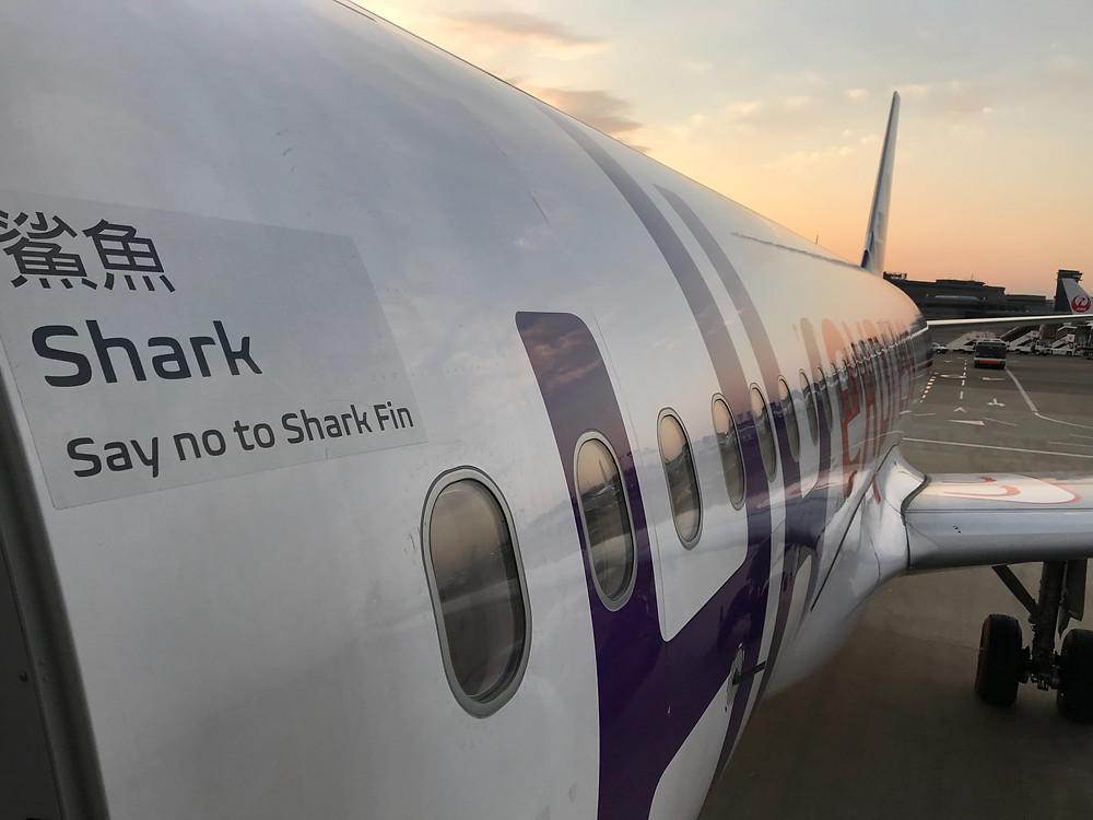 香港エクスプレス 機体