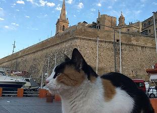 僕の旅行記  - 世界の街