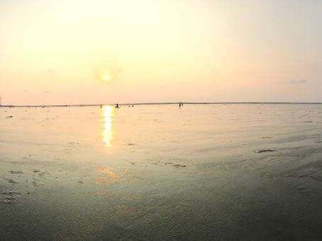 台湾 台中 高美湿地 (高美濕地 Kaomei Wetland)