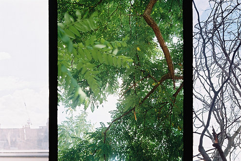 Maxim Sinclair, '919', 2018, 35mm Film, 10.2x15.2cm