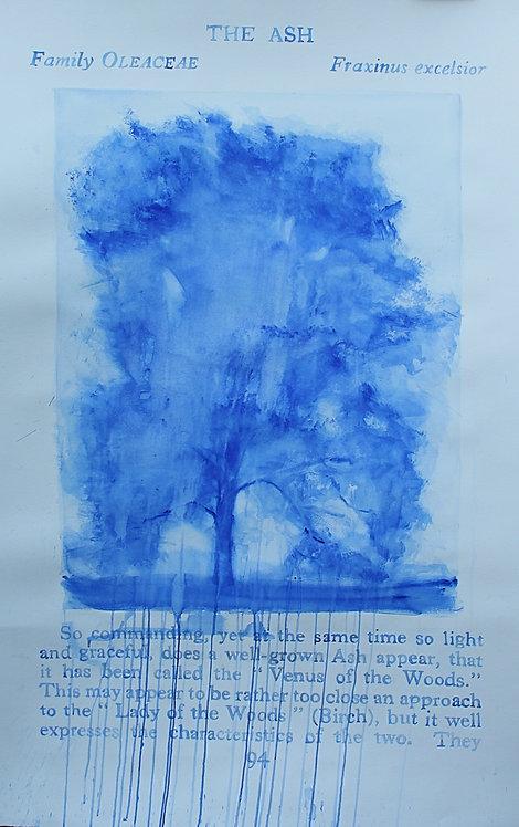 Edith Dormandy, '...Ash', 2020, watercolour on paper, 152x98cm