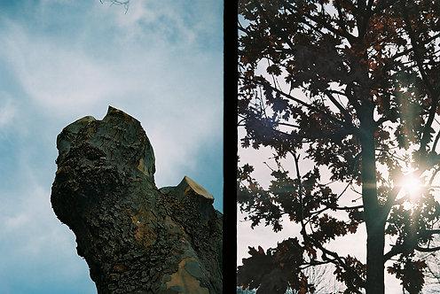 Maxim Sinclair, '225', 2019, 35mm Film, 10.2x15.2cm