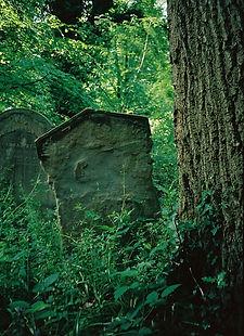 Grave - CNV00005.JPG