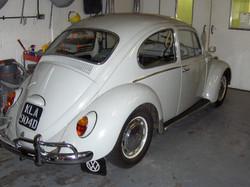 66 Bug