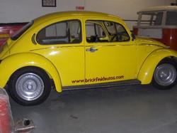 73 Bug