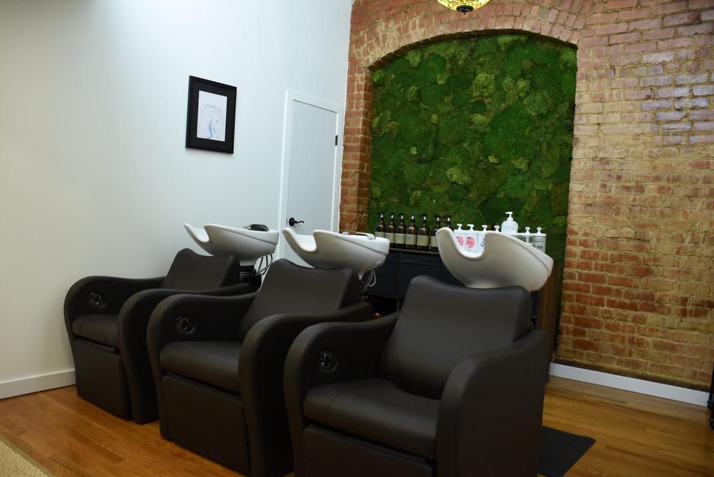 The Shampoo Room