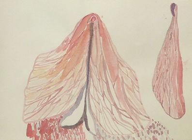 Sexualität, Natur, Körper, Assoziationen, Salzburger Stefanie, Malerei, Wasserfarben, Papier