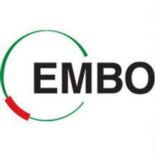 embo square.jpg