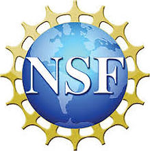 NSF 2.jpg