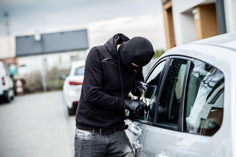 Axis Security Employee prevents van theft
