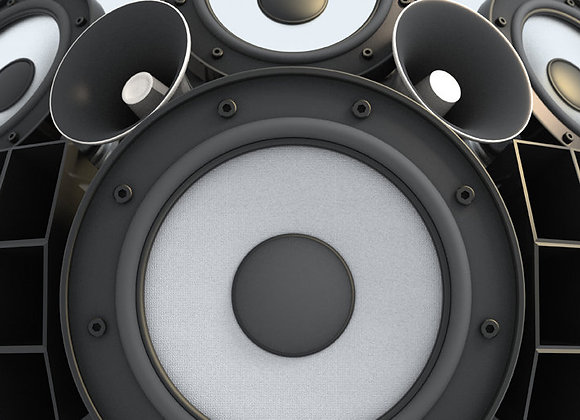 Large Speaker Sound System