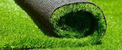 Укладка газона под ключ. Посев газона
