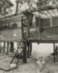 taylor camp.jpg