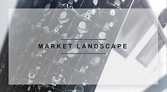 Market Landscape icon.png